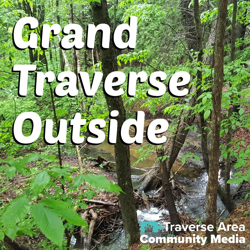 Forest with creek running through with Grand Traverse Outside imposed over